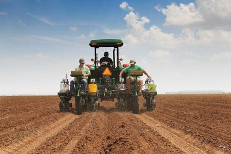 Cotton Planting Research Plot