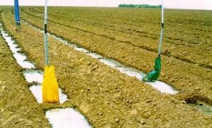 Irrigation Socks